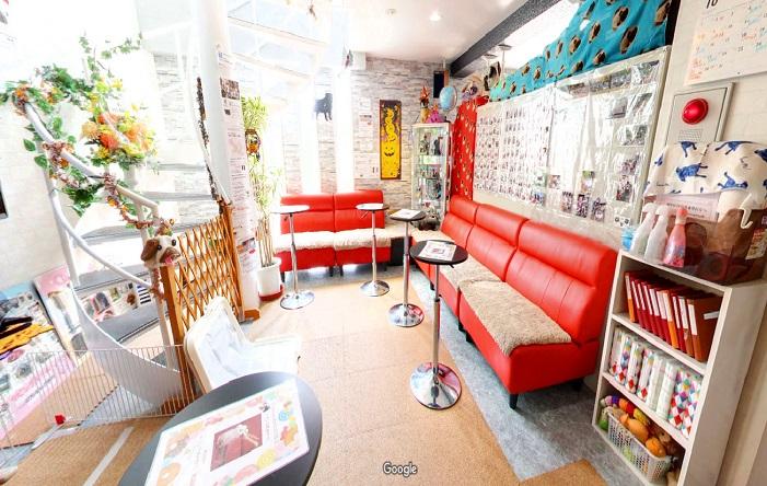 Googleストリートビュー LivingRoomパグカフェ